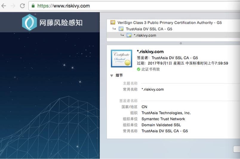 名型DV SSL证书显示